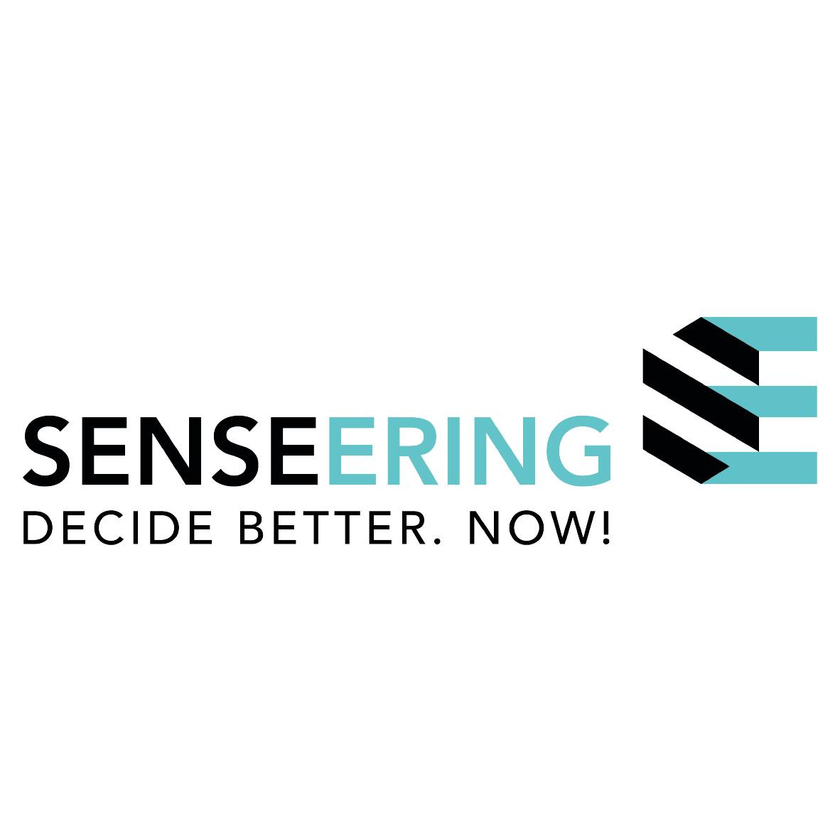 Logo Design Senseering von der Yip Yips Agentur Aachen