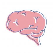 Medizinische Illustration von Yip Yips Agentur Aachen, dargestellt durch die Illustration eines Gehirns